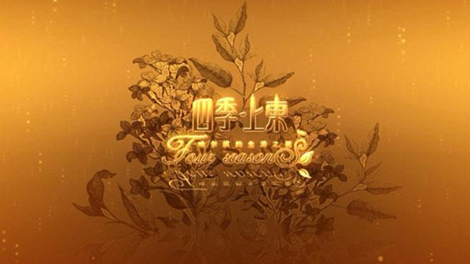 房地产数字宣传片—哈尔滨四季上东